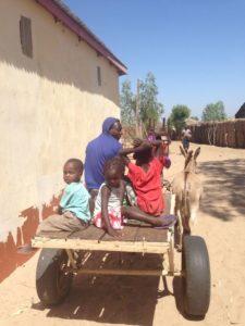 PuurHulst Gambia projecten